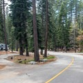 There are many long pull-through sites.- Fallen Leaf Lake Campground