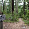 A trail sign is about 0.5 miles from the parking area. - Lemolo Falls via the Lemolo Falls Trail