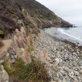 A narrow trail leads down to the beach.- Mill Creek Beaches + Picnic Area