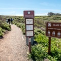 The trailhead for the Bluff Trail is just past Spooner's Cove.- Bluff Trail Hike