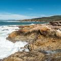 Spectacular coastal scenery.- Bluff Trail Hike