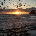 Water drops suspended in flight.- Davenport Landing Beach