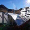 Greenhouses warmed by natural steam.- Mystic Hot Springs