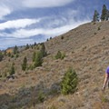 Slight uphill on open landscape from the Snow Pass Trailhead.- The Hoodoos