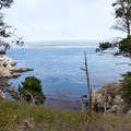 Looking into Bluefish Cove from the trail.- North Shore Trail + Whaler's Knoll