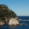Guillemot Island populated with cormorants.- North Shore Trail + Whaler's Knoll