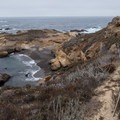 Panoramic view of Sea Lion Point.- Sea Lion Point + Sand Hill Trails