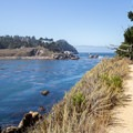 Hiking along the Granite Point Trail.- Granite Point + Moss Cove Trails