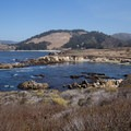 Looking at Moss Cove from Granite Point.- Granite Point + Moss Cove Trails