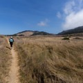 The Moss Cove Trail leads through a picturesque field.- Granite Point + Moss Cove Trails