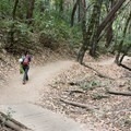 The trail to Castle Rock Falls.- Castle Rock Falls Waterfall Cliff