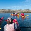 A group of beginner kayakers familiarizing themselves with their boats before heading out into open water.- Monterey Bay