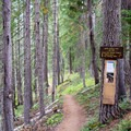 Information signs along the North Umpqua Trail.- Lemolo Falls via the North Umpqua Trail