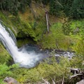 The spray from Lemolo Falls makes the base of the canyon lush and green.- Lemolo Falls via the North Umpqua Trail
