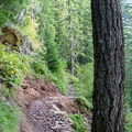 North Umpqua Trail. - Lemolo Falls via the North Umpqua Trail
