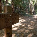 This sign indicates where two starting trails merge.- Buzzard's Roost Trail