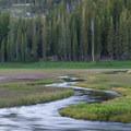 A serpentine Kings Creek making its way through the meadow.- Kings Creek Meadow