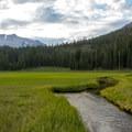 Kings Creek Meadow is a pristine beauty.- Kings Creek Meadow