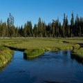 Kings Creek with the road in the background.- Kings Creek Meadow