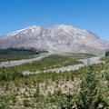 Mount St. Helens from the base of the Muddy River.- Ape Canyon to Plains of Abraham