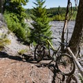 The forested trail adjacent to the Muddy River lahar field.- Ape Canyon to Plains of Abraham