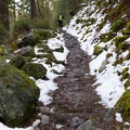 Hiking along the trail at the very beginning of spring.- Canyon Creek Falls