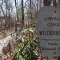 Sign marking the Linville Gorge Wilderness boundary.- East Rim Trail