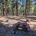 Picnic table and fire pits at each campsite. - Boca Spring Campground