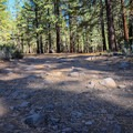 The campground is only accessible via a very rocky road.- Boca Spring Campground