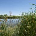 Pond at Cherry Creek State Park.- Cherry Creek State Park