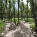 Pipeline Trail, Cherry Creek State Park.- Wetland Loop Trail Hike