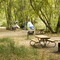Sites are well shaded and open in between.- East Portal Campground