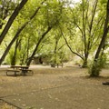 Typical campsite at East Portal Campground.- East Portal Campground