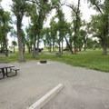 Typical tent campsite at Cherry Creek State Park Campground.- Cherry Creek State Park Campground