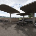 Heronry group picnic area at Chatfield State Park.- Chatfield State Park