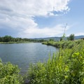 Gravel Ponds at Chatfield State Park.- Chatfield State Park