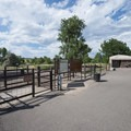 Off-leash dog area at Chatfield State Park.- Chatfield State Park