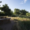 Picnic area at South Platte Park's southern entrance off of CO Highway 470.- South Platte Park