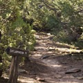 The spur for Exclamation Point along the Green Mountain Trail.- Green Mountain Trail + Exclamation Point