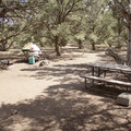 Campsites feature a picnic table and a barbecue.- North Rim Campground, Colorado