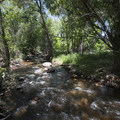 Bear Creek, Bear Creek Lake Regional Park.- Bear Creek Lake Regional Park