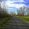 Gravel Path leading to the creek.- Irene Rinehart Riverfront Park