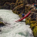 The seal launch is fun too!- North Santiam River: Niagara Section