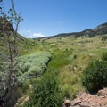 Grasslands and creek bed at Lory State Park.- Lory State Park