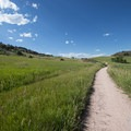 First section of the hike along the Swan Johnson Trail.- Stout, Sawmill + Nomad Trail Loop