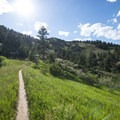 Stout Trail, Soderberg Open Space.- Stout, Sawmill + Nomad Trail Loop