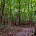 The trail leading around Radnor Lake.- Radnor Lake