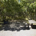 Sites at the South Rim Campground at Black Canyon of the Gunnison are well shaded.- South Rim Campground