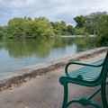 Plenty of benches line the pathway around the pond.- Centennial Park