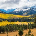 Fiery aspens under a dusting of snow, a quintessential fall view from the Inner Basin Trail.- Inner Basin Trail